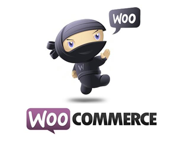 woocommerce theme development tutorial pdf
