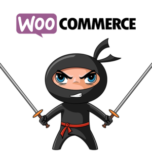 eCommerce Consulting - eCommerce Business Consulting - WooCommerce Plugin